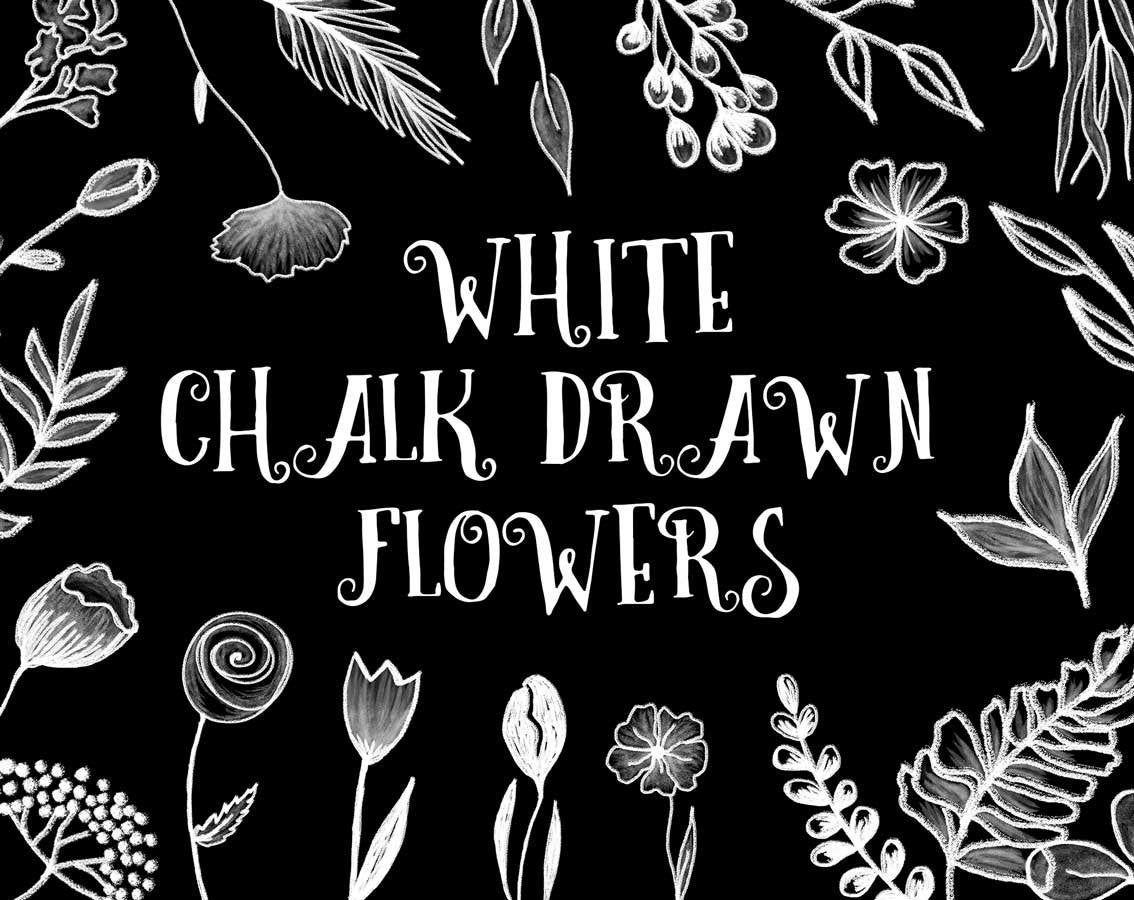 My Design Elements 22 Png White Chalk Drawn Flowers Clip Art Chalk Design Elements Instant Download Floral Clipart C Chalk Drawings Flower Drawing Chalk Design
