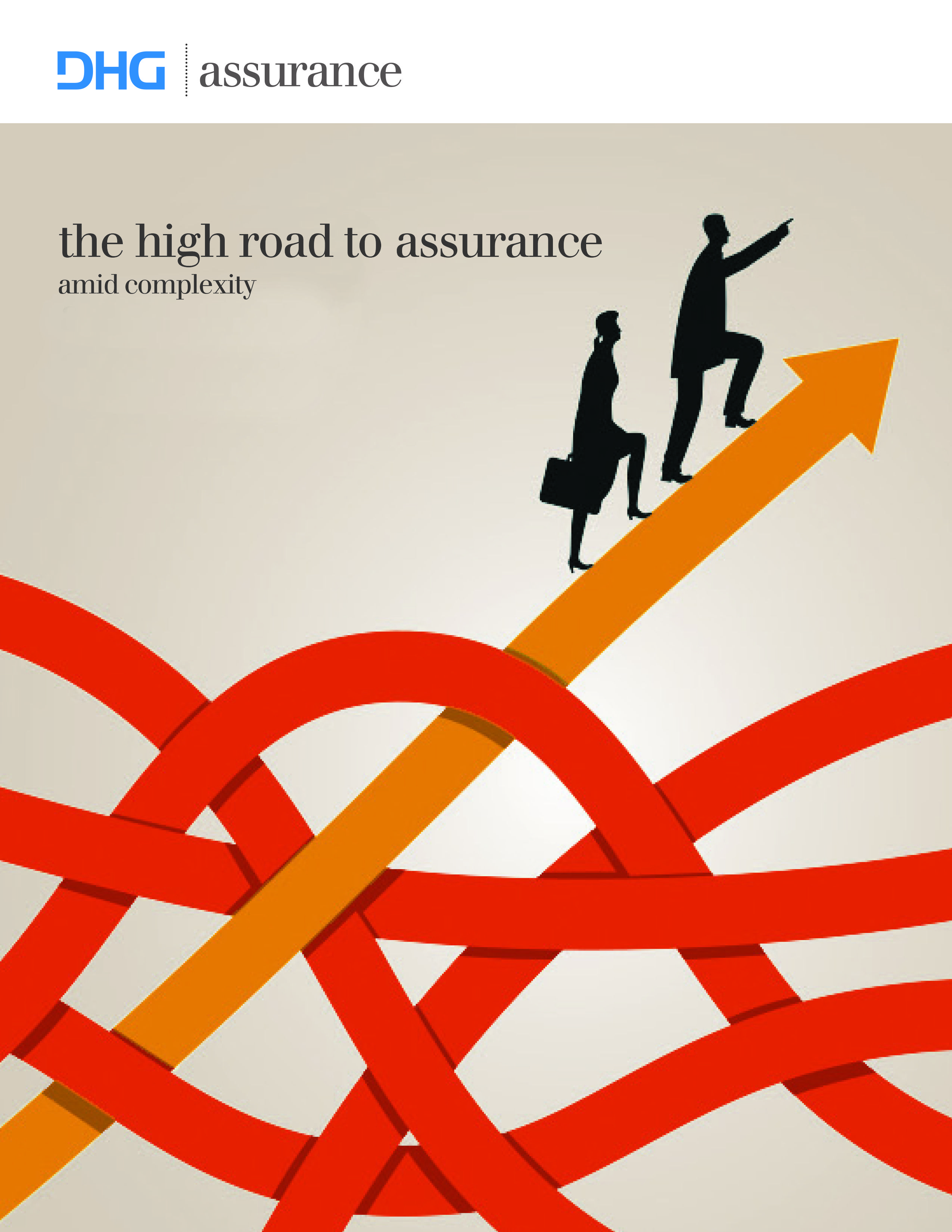 Dixon hughes goodman assurance brochure cover brand book