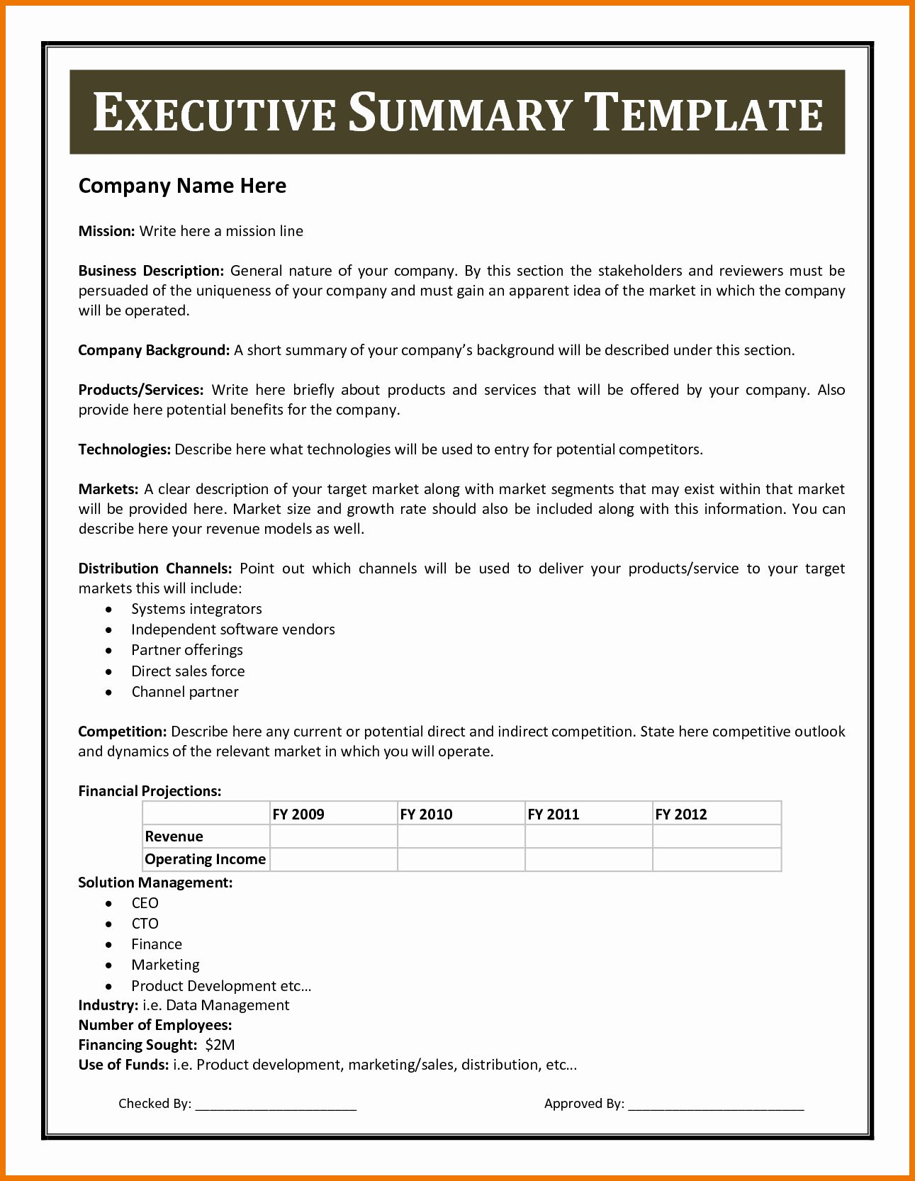 Project Executive Summary Template Word in 2020 (With