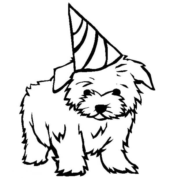 Puppy Dandie Dinmont Terrier Puppy For Your Birthday Present Coloring Page Jpg Puppy Coloring Pages Dog Coloring Page Birthday Coloring Pages