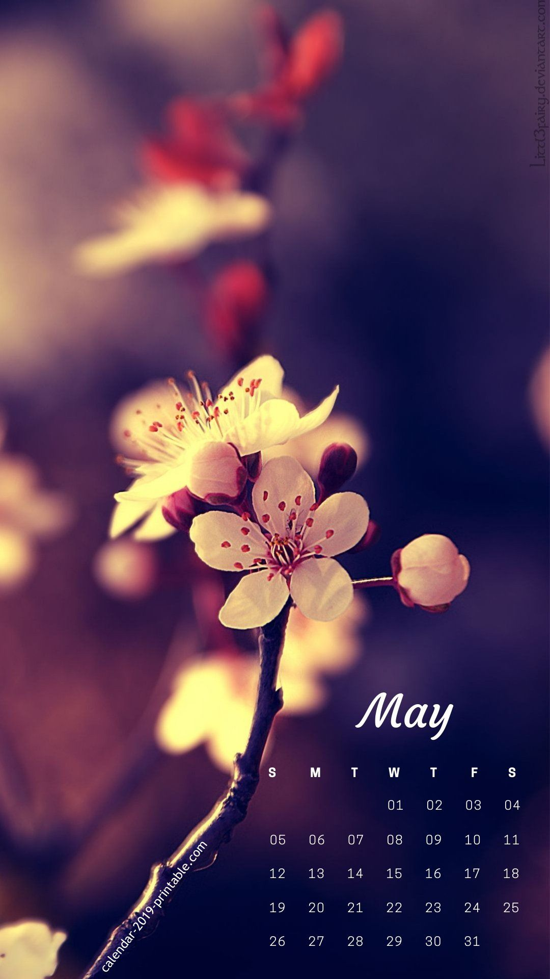 may 2019 iphone calendar flower wallpaper Desktop