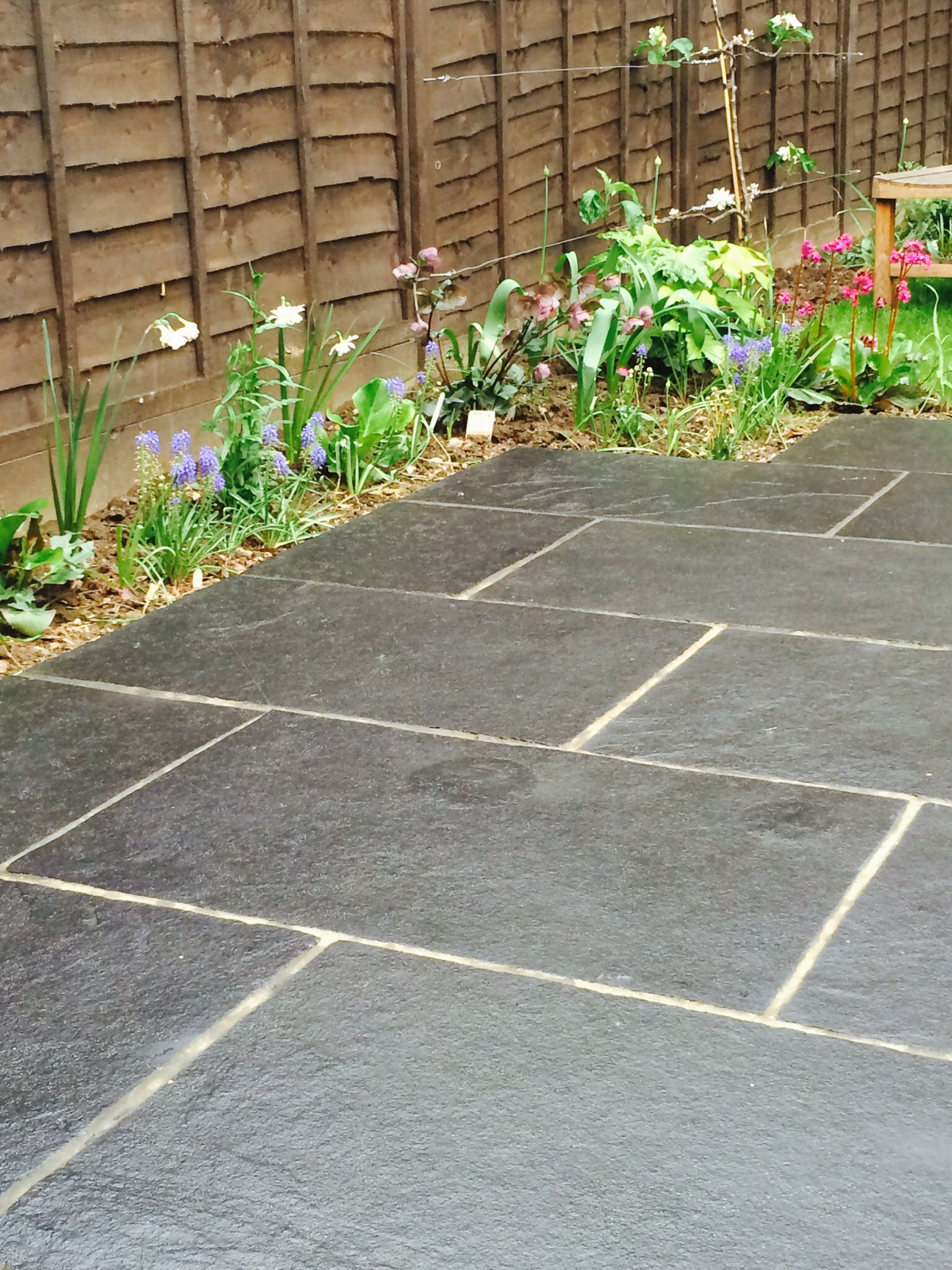 Black Limestone Patio AFTER Its Annual Treatment With Enhanced Plus :)  Http://