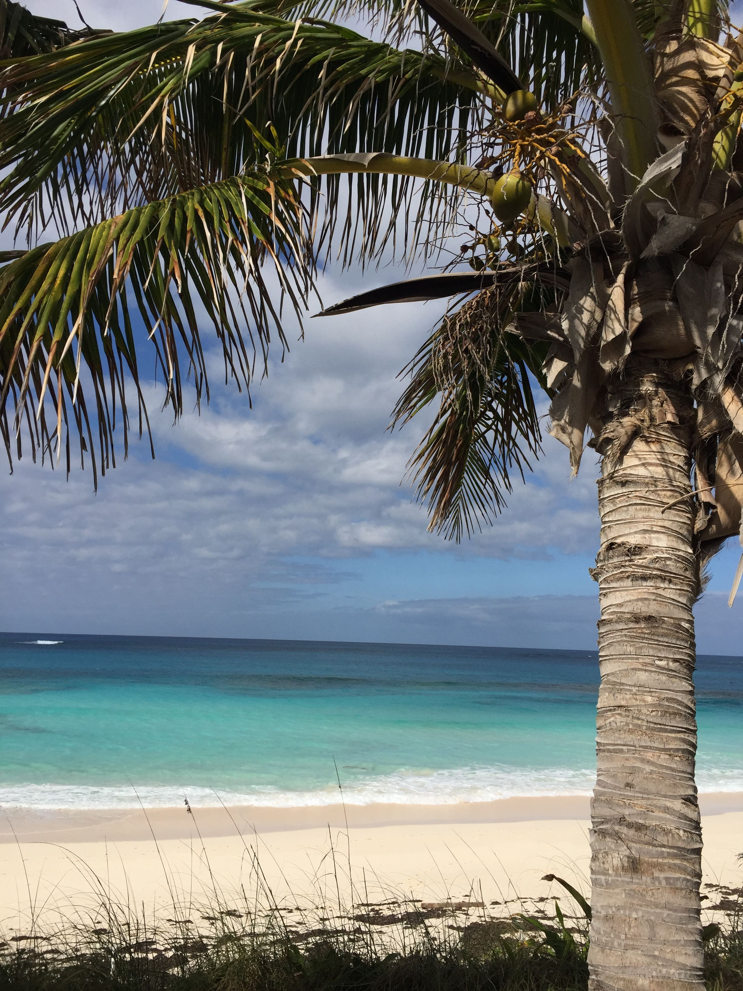 4cb273f33c33 Flip Flops On The Beach resort in Great Guana Cay Abaco