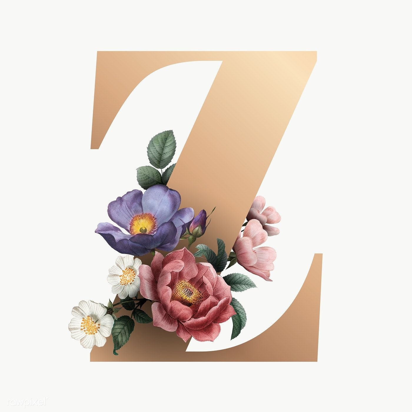 Classic And Elegant Floral Alphabet Font Letter Z Transparent Png Free Image By Rawpixel Com Manota In 2020 Fonts Alphabet Lettering Fonts Lettering Alphabet Fonts