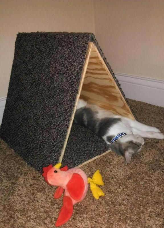 Simple DIY cat scratching post and play area.