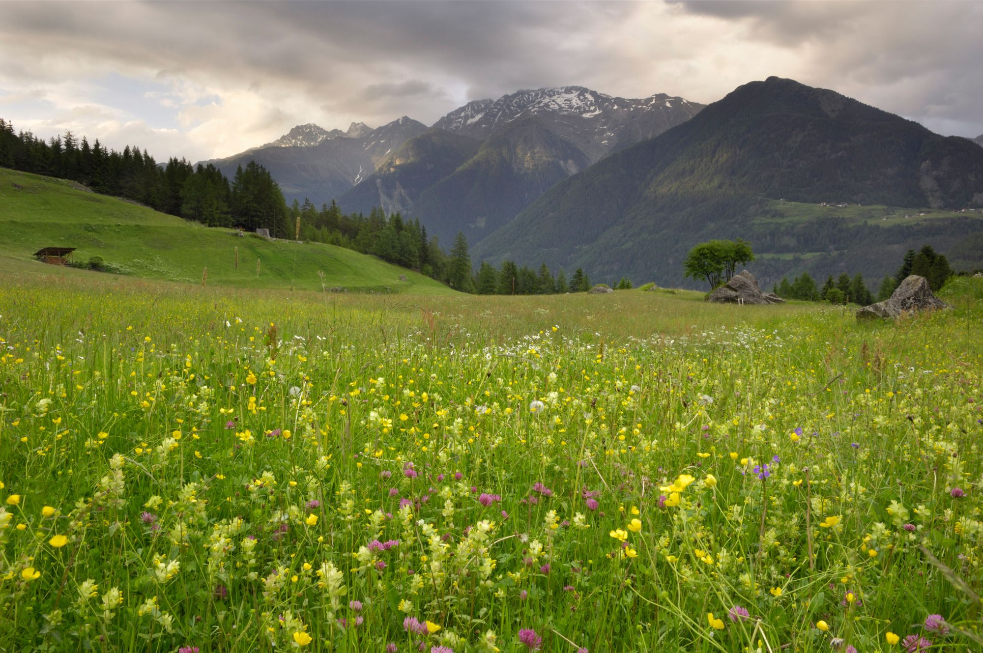 Extraordinary Hiking Tours to Take in Austria This Summer, No Guide Needed