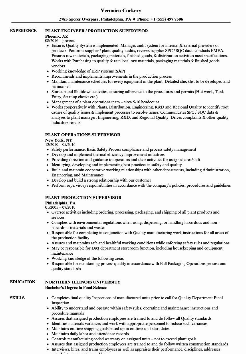11+ Civil lawyer resume sample Examples