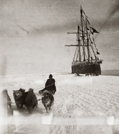 Amundsen, the first man to the South Pole.