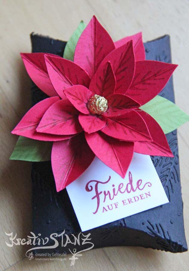 Winterkurse und Weihnachtsstern | Verpackung Weihnachten ...