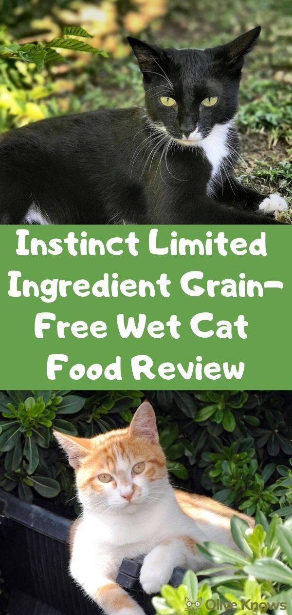 Instinct Limited Ingredient GrainFree Wet Cat Food Review