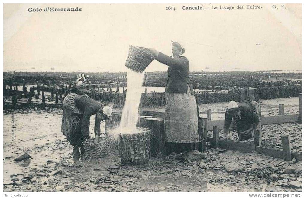 CANCALE - Le Lavage des Huîtres