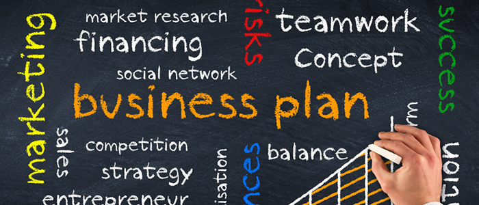 Business Plan Basics From The Pros  Business Plans Chicago