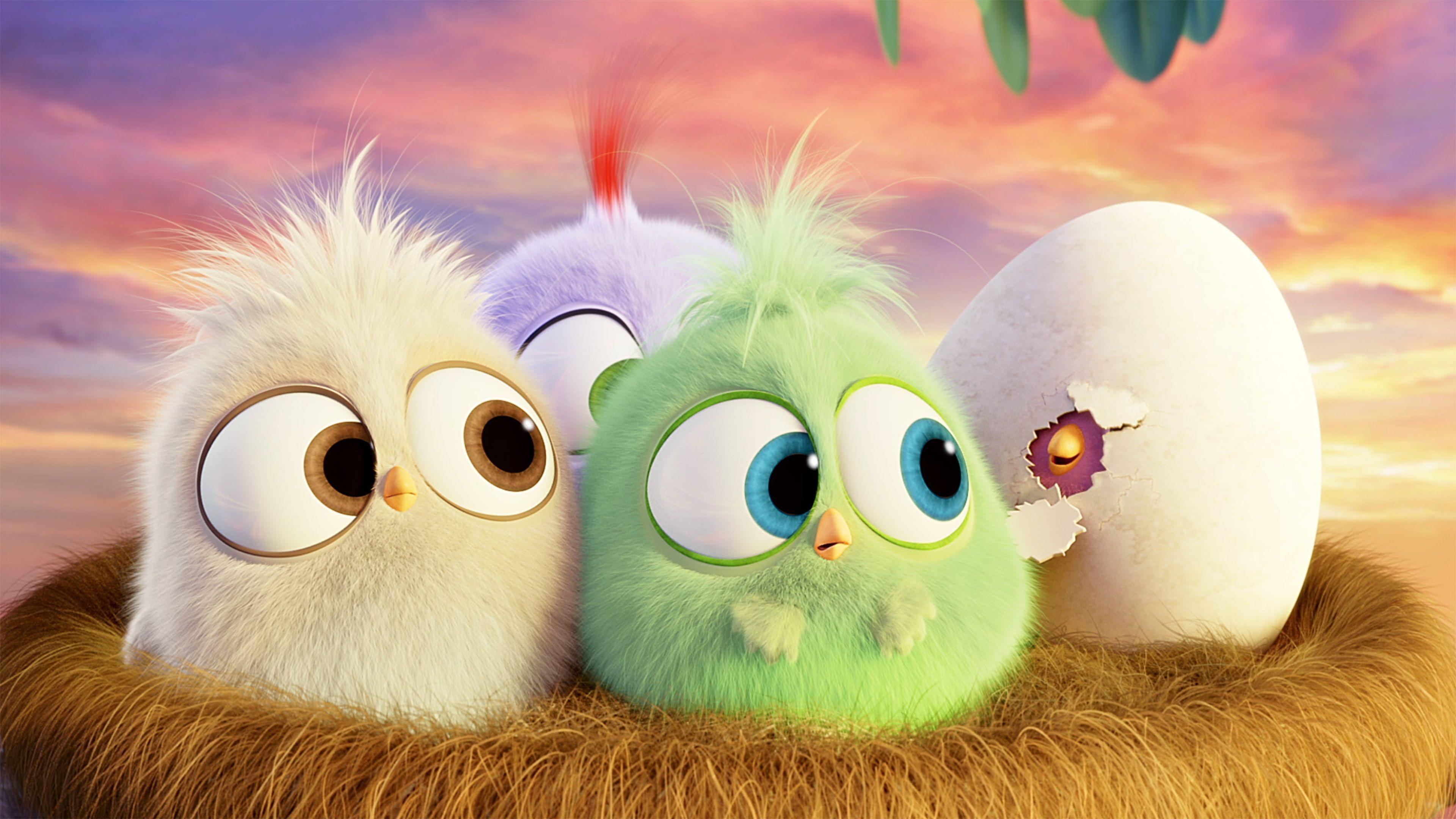 3840x2160 Angry Birds 4k Desktop Wallpaper Cute Birds Cute Cartoon Wallpapers Cute Wallpapers