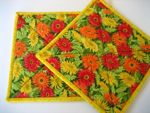 Colorful Flowers Pot Holders Nice Look