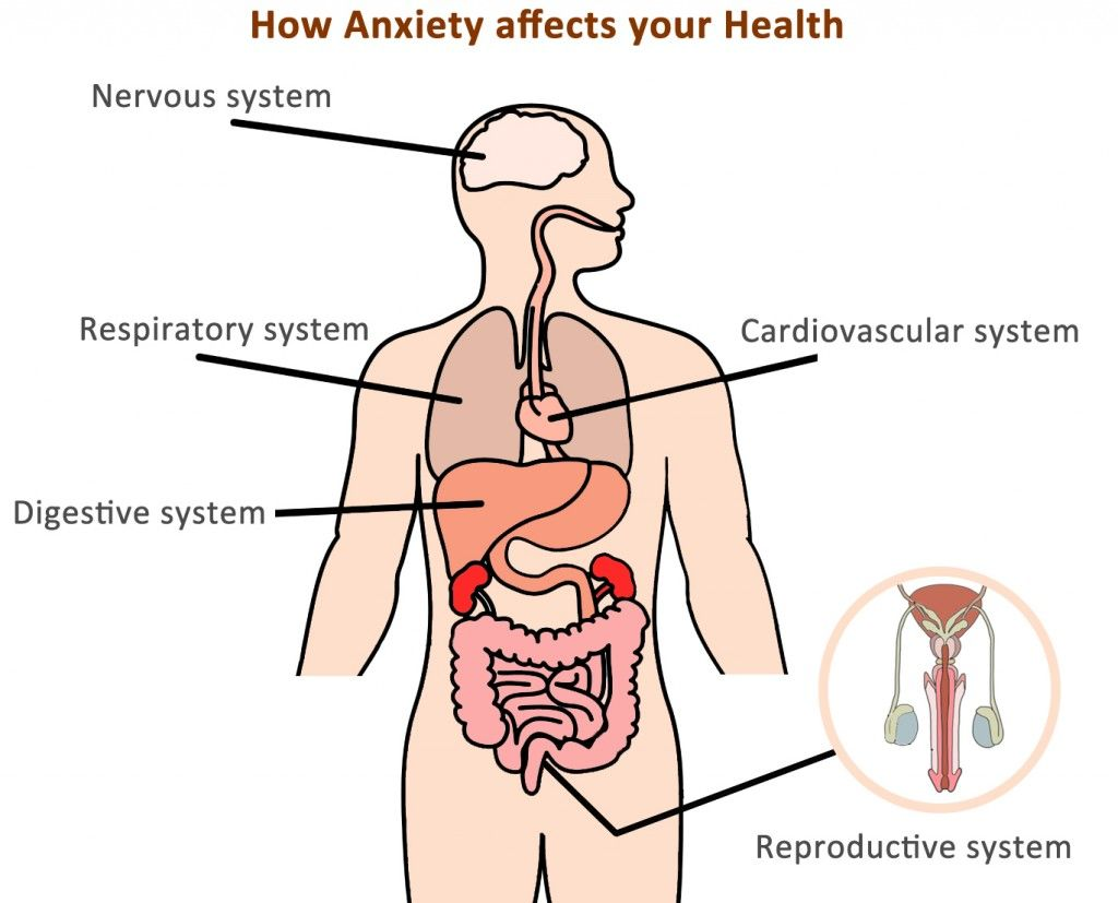 Defavouredkings blog anxiety causes symptoms and treatments constant anxiety has an adverse effect on cardiovascular respiratory digestive nervous reproductive and lymphatic systems and organs associated with it ccuart Images