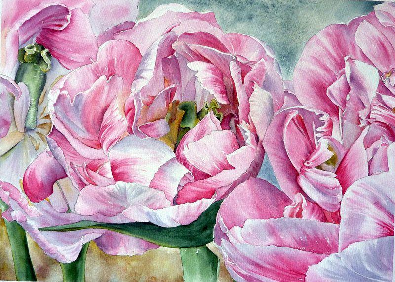 Image Associee Fleurs