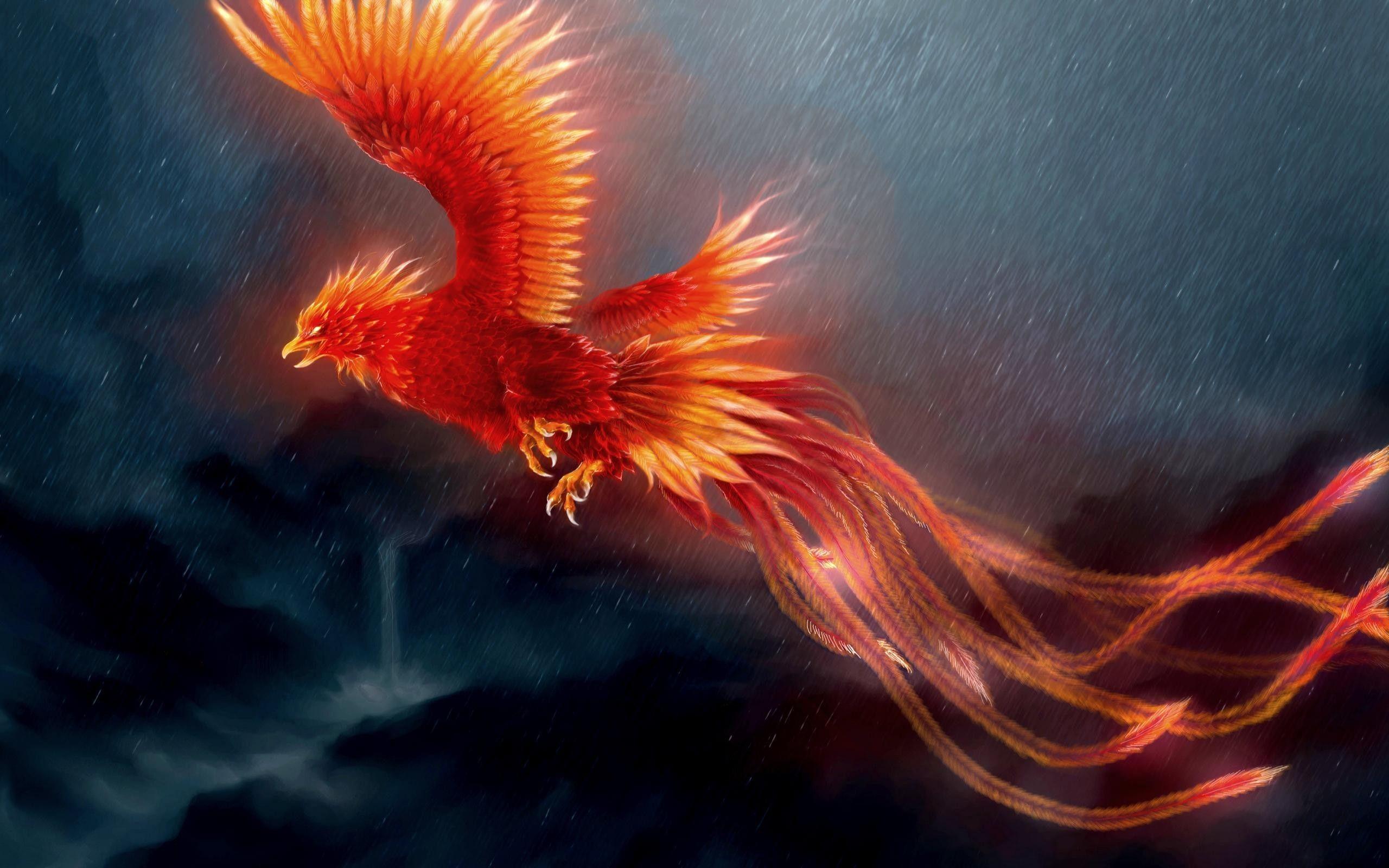 80+ Phoenix Bird Wallpapers on WallpaperPlay Mitología