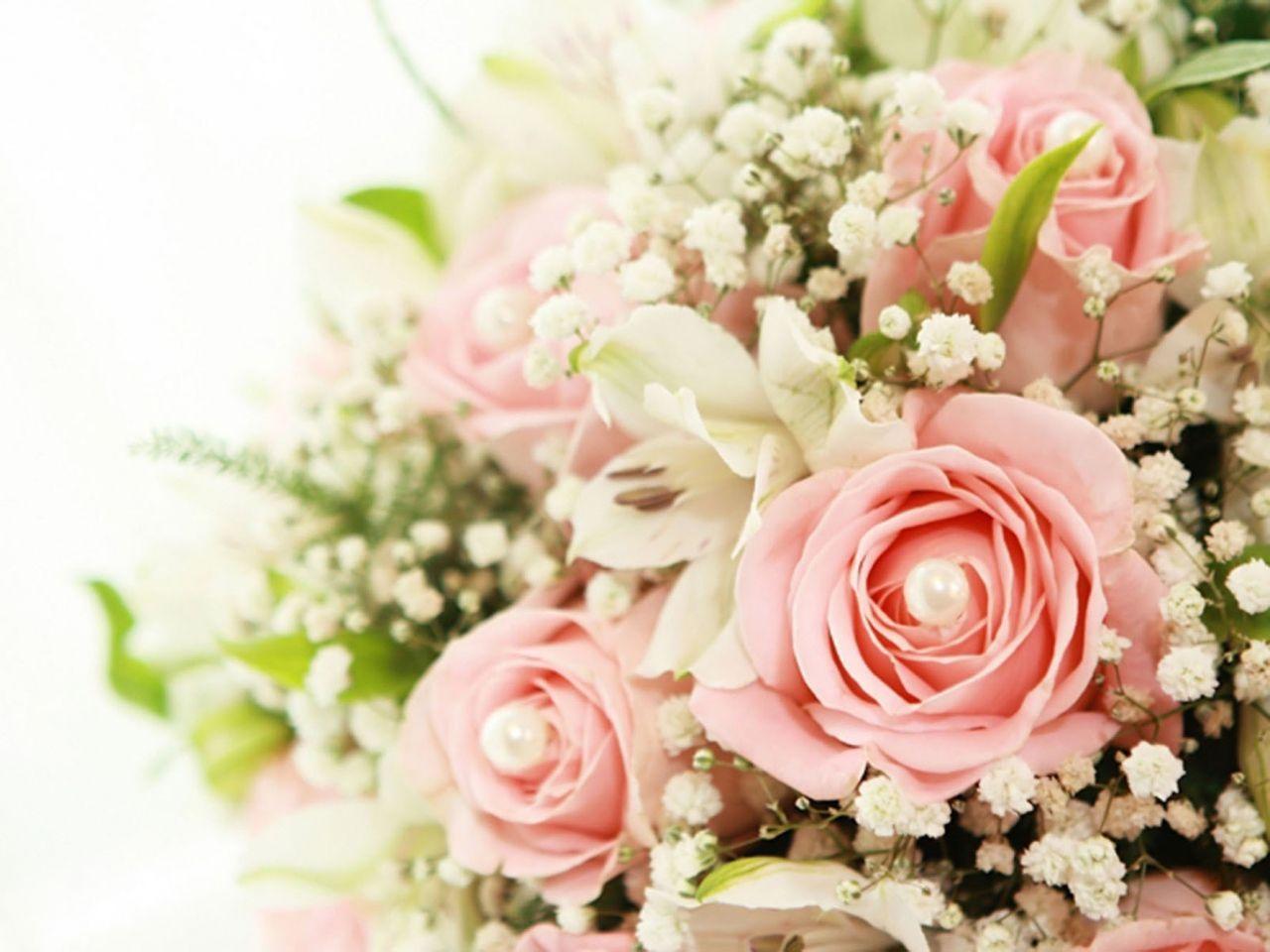 Imagen De Flores Hermosas Para Fondo De Pantalla: Resultado De Imagen Para Fondos De Pantalla De Flores