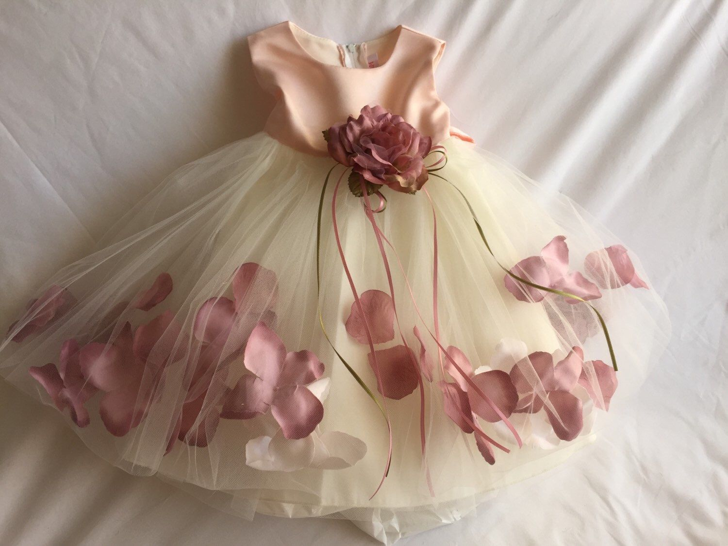 1000  images about Baby girl Fancy Frilly Dresses- 1st Birthday ...