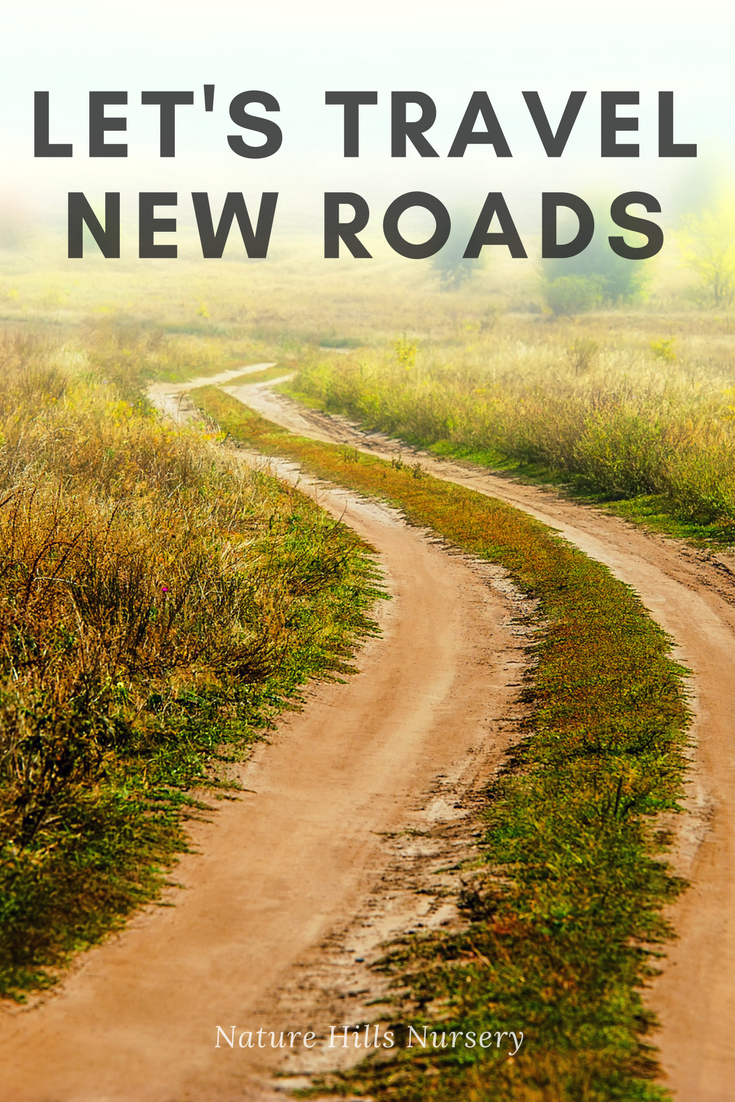 let s travel new roads new roads travel garden quotes