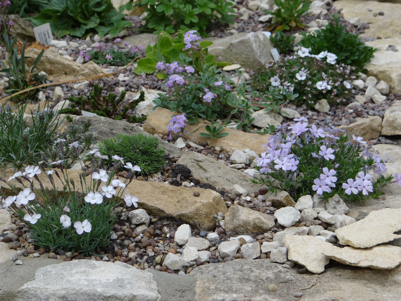 Scree Bed Rock Garden Rock Garden Design Unique Gardens
