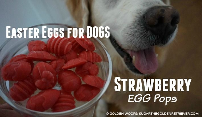 Heart Minted Watermelon Pops For Fresh Dog Breath Eggs For Dogs