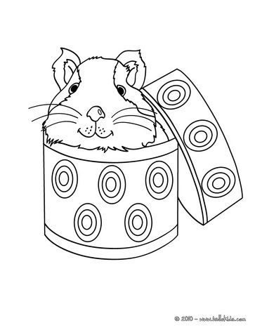 Guinea pig in a box coloring page | animals .. | Pinterest | Colorear