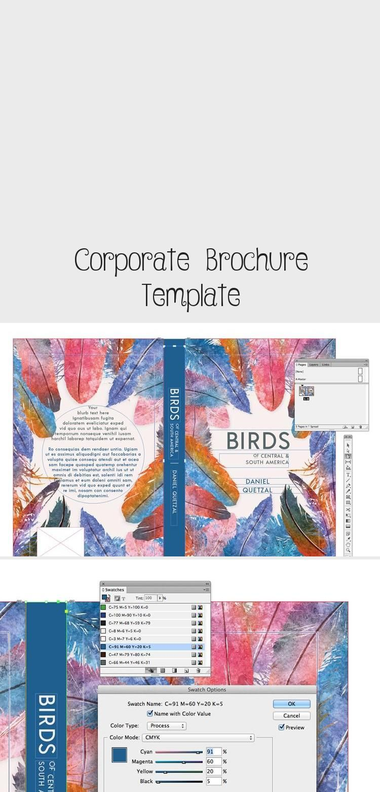 Free InDesign modern business brochure template download