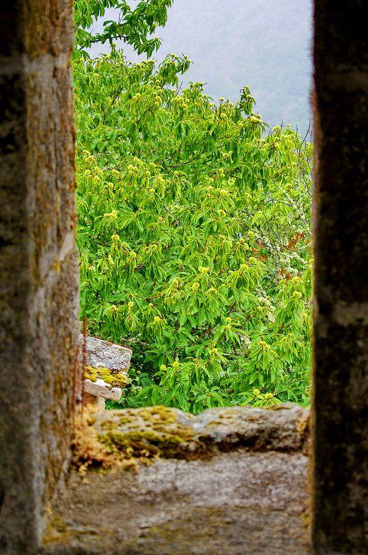 Ribeira Sacra - Galice - Espagne - 298 - Mosteiro  Iglesia Santa Cristina de Ribas de Sil