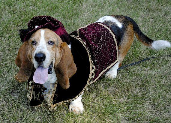 Custom Renaissance Tudor Royal Ringbearer Dog Pet Costume outfit for LARGE XL pet