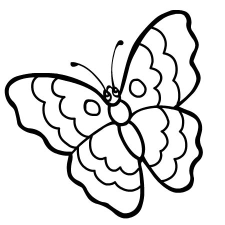 Dessin papillon recherche google gabarits templates - Papillon maternelle ...