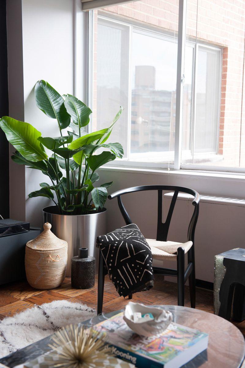 Wishbone Chair Black Wood Y Chair Living space