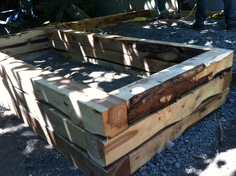 Juniper 6x6 Timbers With Very Rustic Character Make A Gorgeous Raised Bed By Aristata Land Arts Raised Garden Beds Garden Boxes Garden Planning