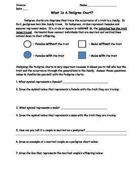Pedigree Chart Lesson Bundle Worksheet Exit Slip And Homework