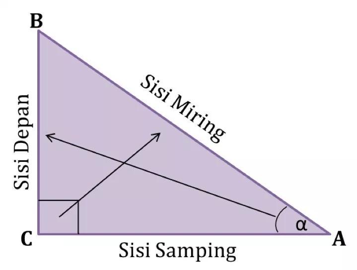 Perbandingan Trigonometri Pada Segitiga Siku Siku Matematika Trigonometri Matematika Sarjana