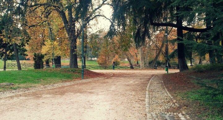Parco Sempione d'autunno
