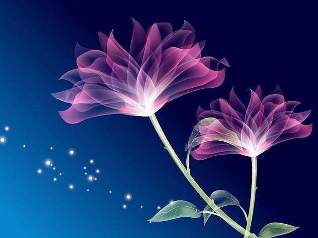Carrie Mcgann S Favorites Flower Desktop Wallpaper 3d Wallpaper Of Flowers Abstract Flowers Computer flower wallpaper hd