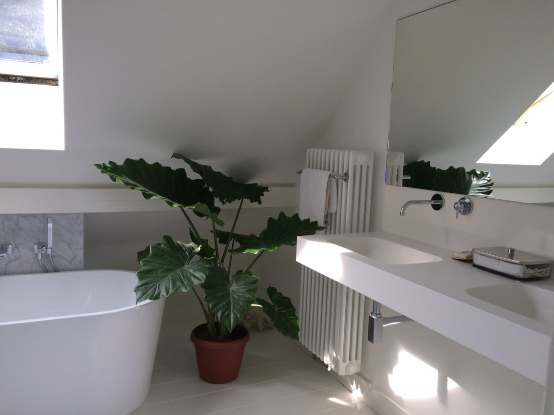 Plants#greens#plant in badkamer# | Badkamer groen | Pinterest