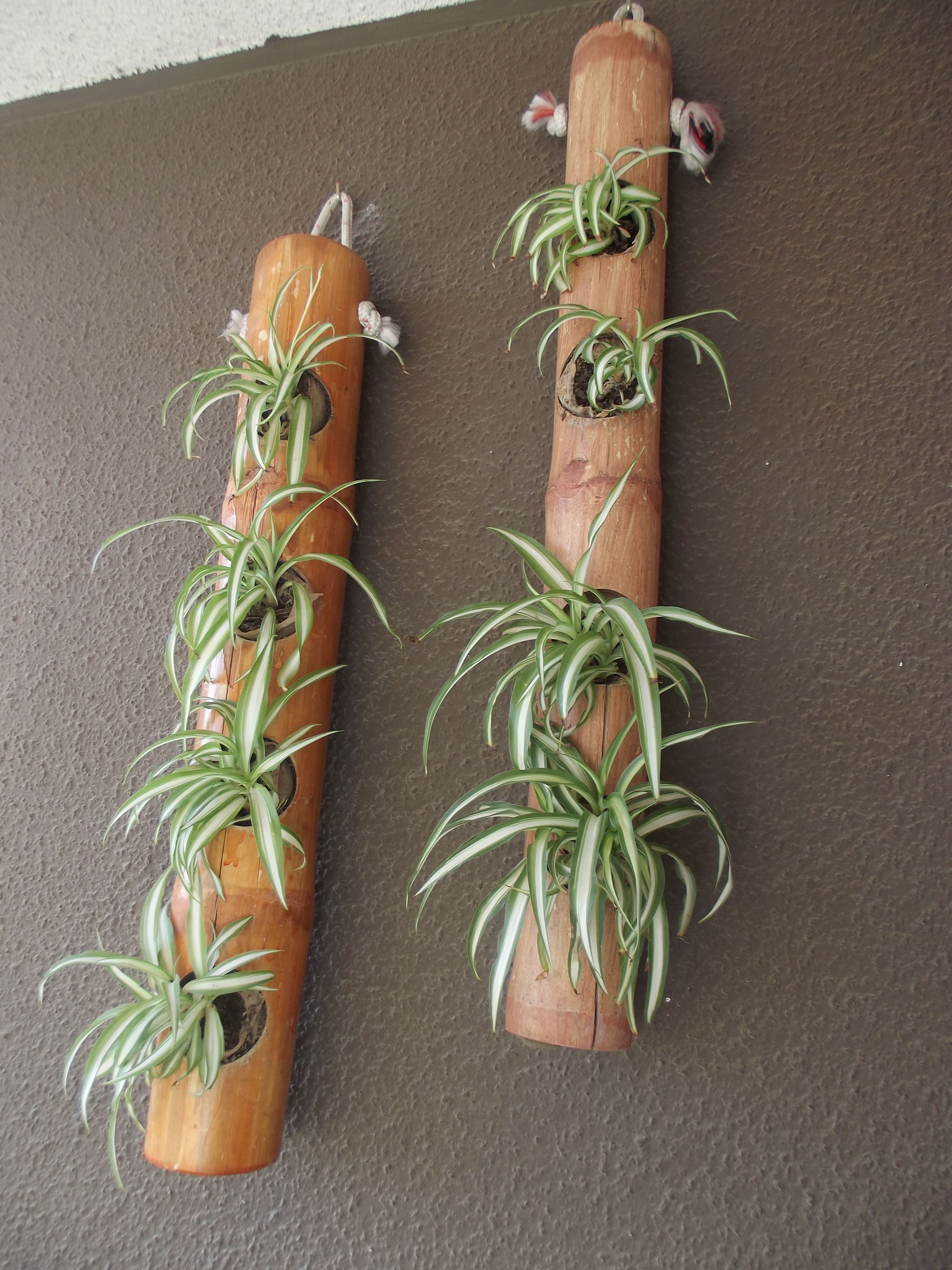 Some Easy Diy Bamboo Projects Bamboo Decor Bamboo Garden