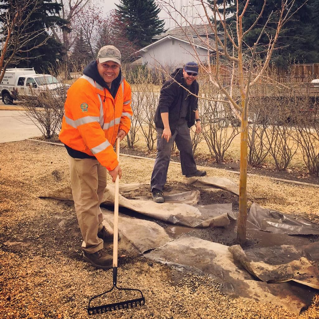 Our health and safety officer is helping our trees crew, planting a beautiful hawthorn tree!! #yyctrees #ArborDay :  ArborCare ‏@ArborCareCanada  Apr 14 Our health and safety officer is helping our trees crew, planting a beautiful hawthorn tree!! #yyctrees #ArborDay  Embedded image permalink