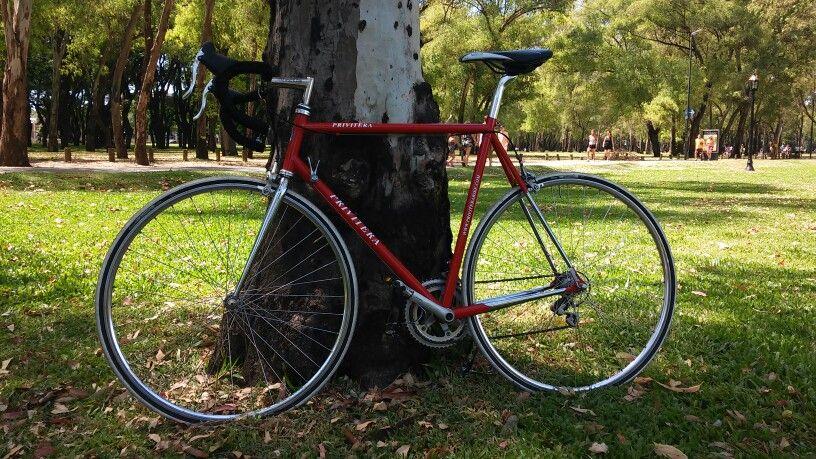 Privitera ruta columbus shimano 105 Bicicletas