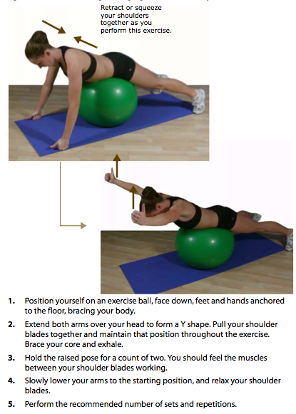 """Prone Y"" on a #stability #ball - 2 sets, 50 reps. Low weight (5 lb bar),  this is for endurance/injury prevention. #neck #exercise. """