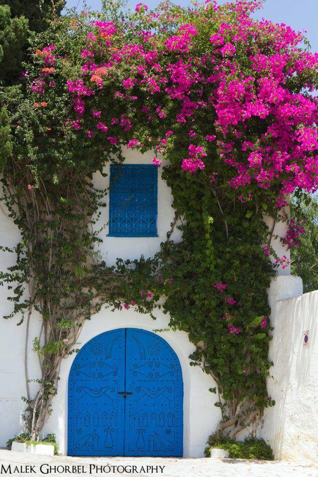 Who wants to be here ? at Tunisia, Sidi Bou Said ♥