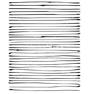 Liquid organic black stripe lines pattern on white vector by ...