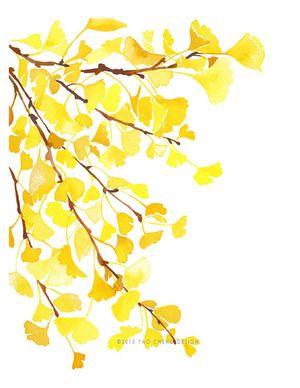 Yellow Ginkgo by Yao Cheng Design
