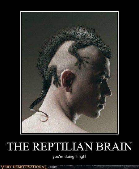The Reptilian Brain Lizard Haircut Crazy Hair Creative Hairstyles