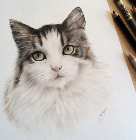 Cute Animal Pencil Drawings By British Artist Danielle
