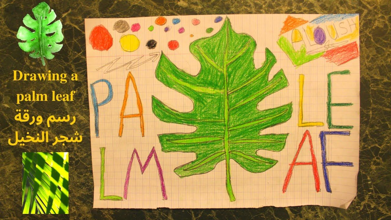 Drawing A Tropical Palm Leaf رسم أوراق النخيل الاستوائية Colored Pens Drawings Palm Leaves