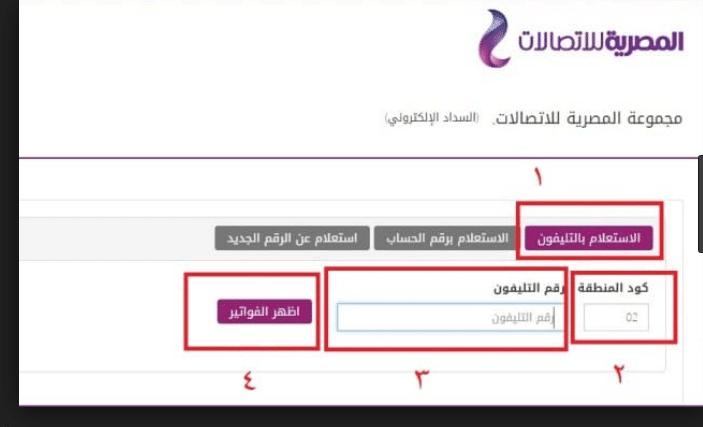 رابط وطريقة الاستعلام عن فاتورة التليفون الأرضي 2018 لشهر أكتوبر من المصرية للاتصالات We كيفية سداد قيمة الفاتورة Chart