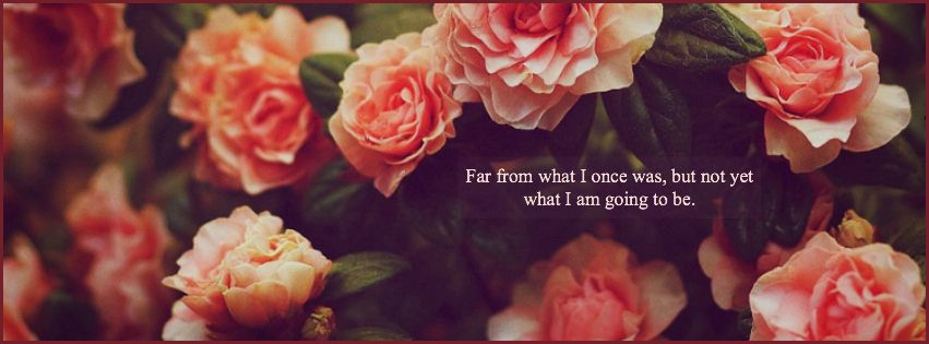 Single But Not Available Quotes: Facebook Cover Images, Cover Photo